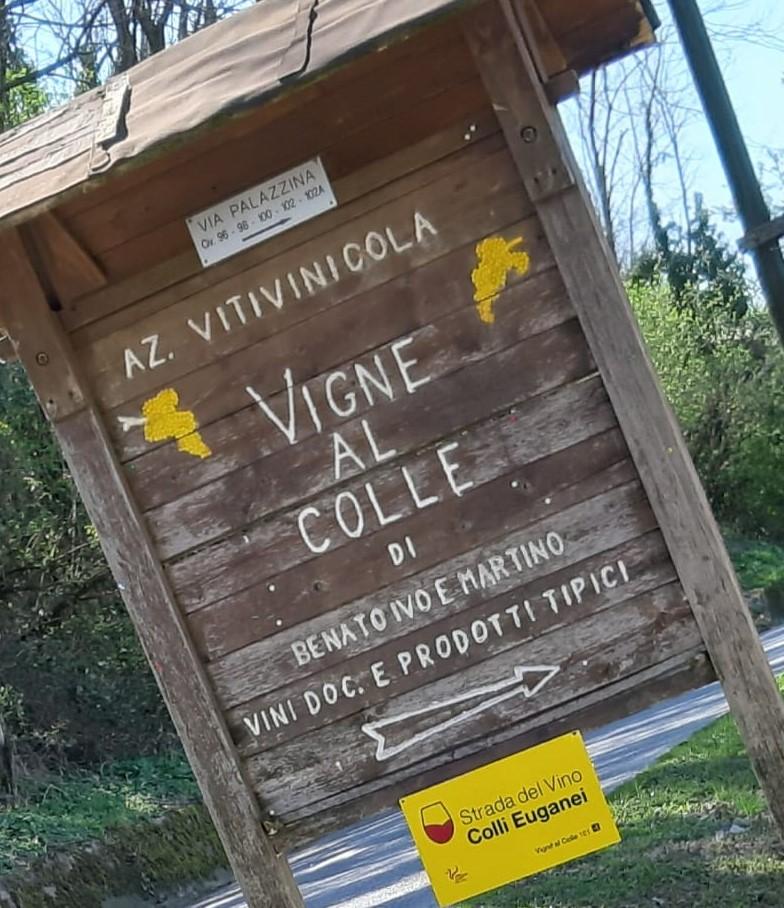 Vigne al Colle & una giornata tra i Colli Euganei