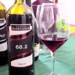 bottiglia di vino raboso
