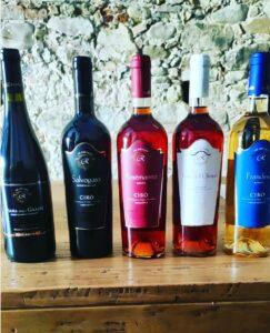 vini bianchi e rossi azienda dell'aquila Cirò